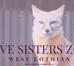Five Sisters Zoo