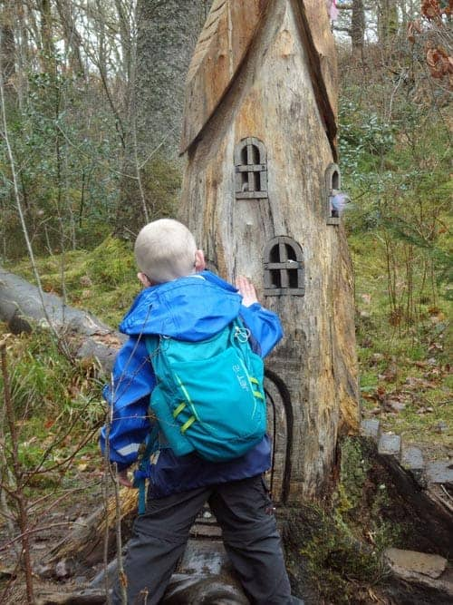 boy finding a fairy tree house