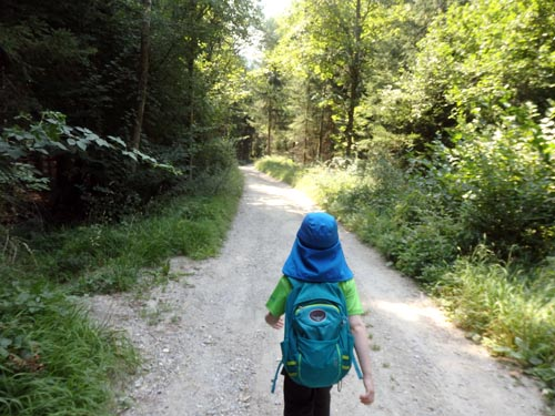Young boy hiking along a stone path through the trees